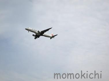 飛行機3.jpg